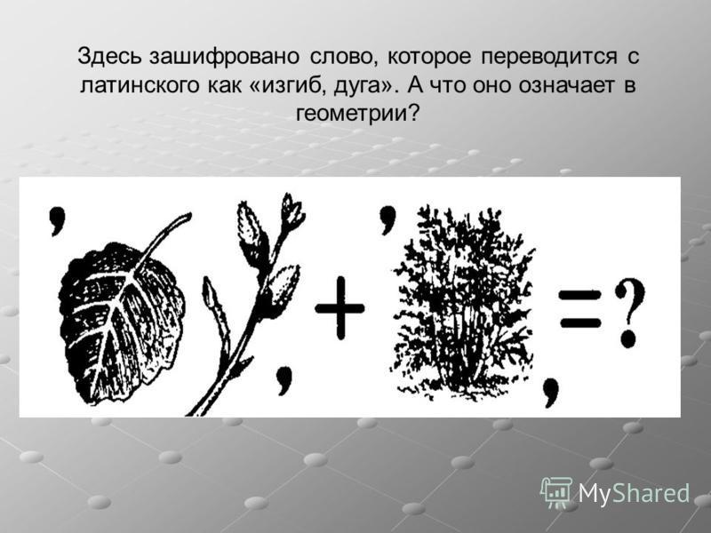 Здесь зашифровано слово, которое переводится с латинского как «изгиб, дуга». А что оно означает в геометрии?