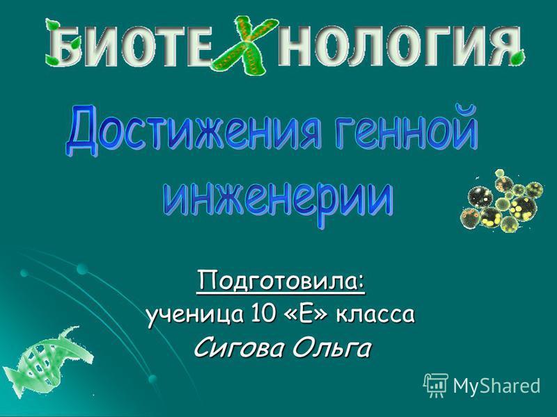 Подготовила: ученица 10 «Е» класса Сигова Ольга