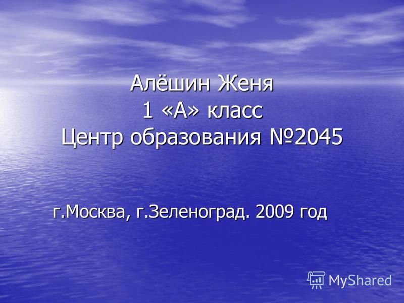 Алёшин Женя 1 «А» класс Центр образования 2045 г.Москва, г.Зеленоград. 2009 год