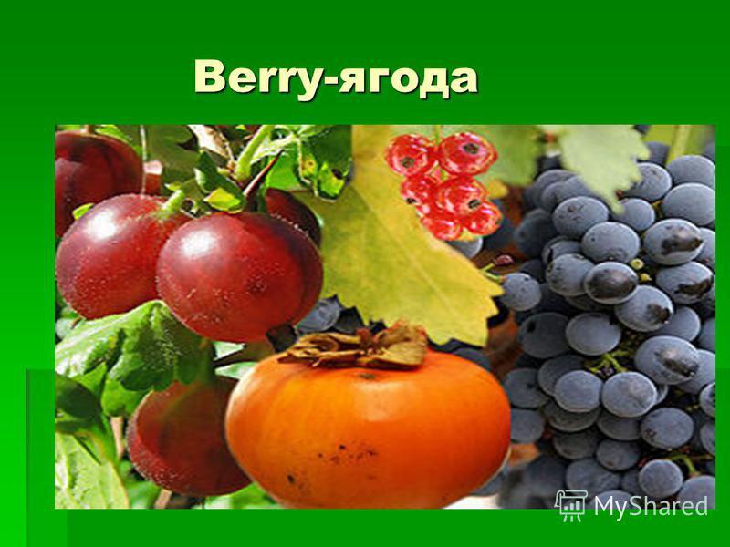 Berry-ягода Berry-ягода
