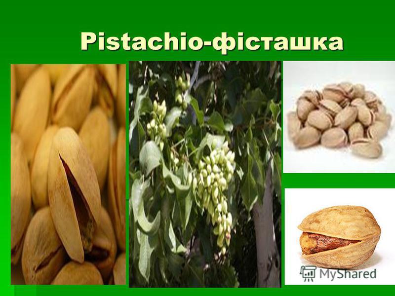 Pistachio-фісташка Pistachio-фісташка