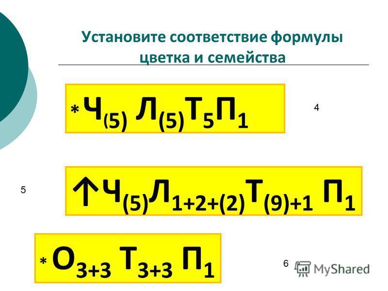 Установите соответствие формулы цветка и семейства 5 6 4 3. * Ч ( 5) Л (5) Т 5 П 1 * О 3+3 Т 3+3 П 1 Ч (5) Л 1+2+(2) Т (9)+1 П 1