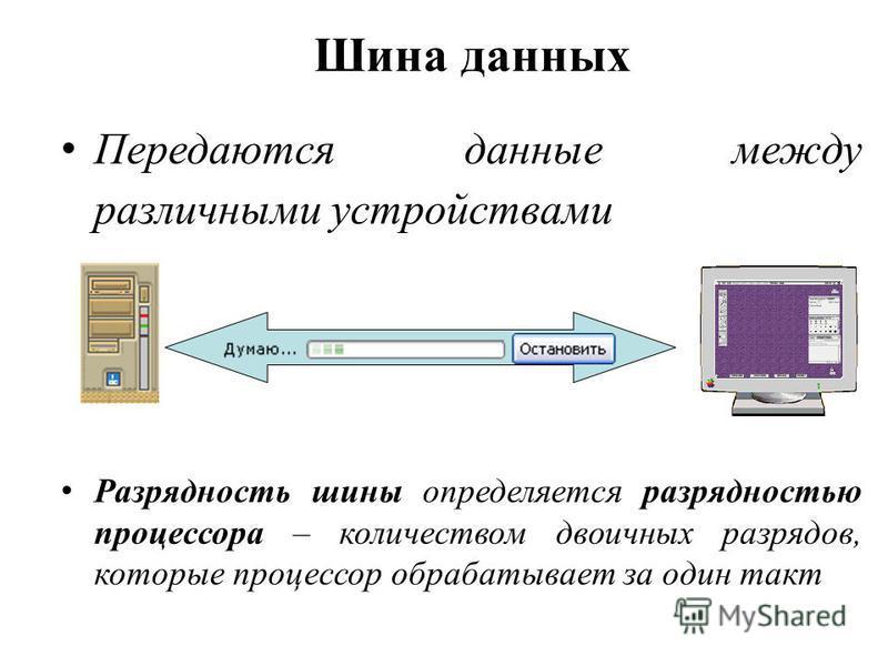 Шина данных Передаются данные между различными устройствами Разрядность шины определяется разрядностью процессора – количеством двоичных разрядов, которые процессор обрабатывает за один такт