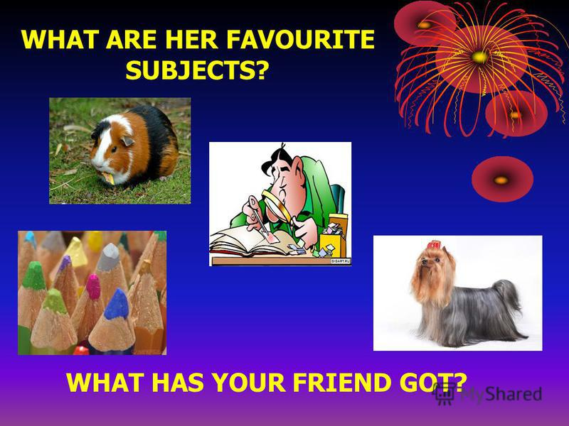 WHAT ARE HER FAVOURITE SUBJECTS? WHAT HAS YOUR FRIEND GOT?