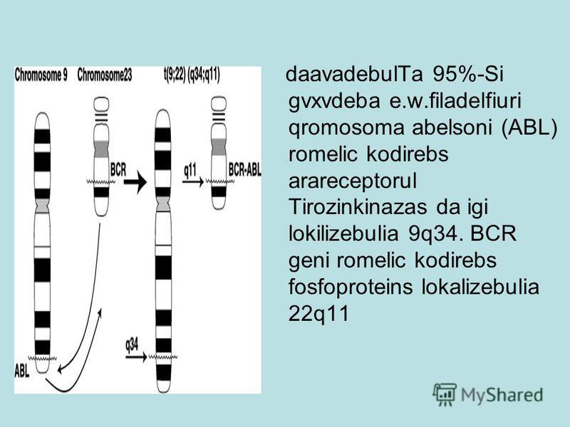 daavadebulTa 95%-Si gvxvdeba e.w.filadelfiuri qromosoma abelsoni (ABL) romelic kodirebs arareceptorul Tirozinkinazas da igi lokilizebulia 9q34. BCR geni romelic kodirebs fosfoproteins lokalizebulia 22q11