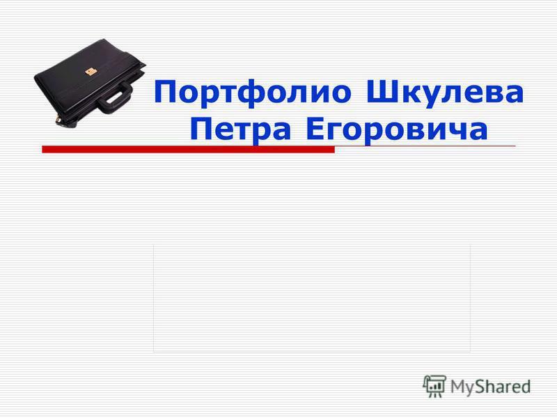 Портфолио Шкулева Петра Егоровича