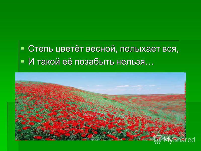 Степь цветёт весной, полыхает вся, Степь цветёт весной, полыхает вся, И такой её позабыть нельзя… И такой её позабыть нельзя…