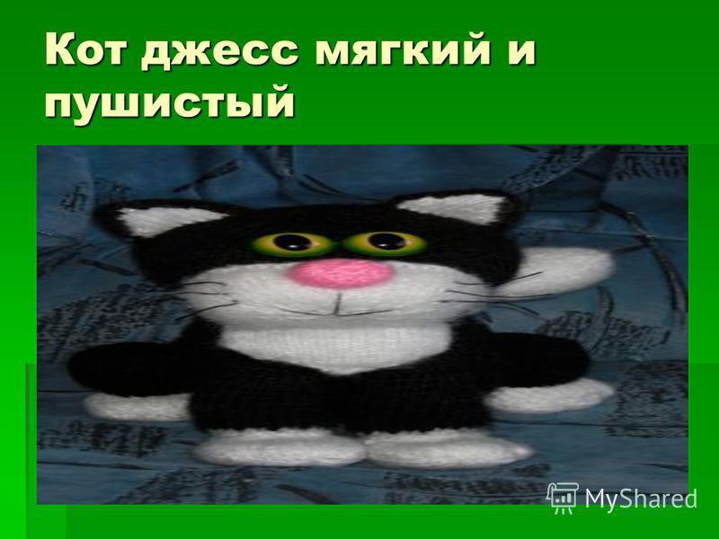 Кот джесс мягкий и пушистый