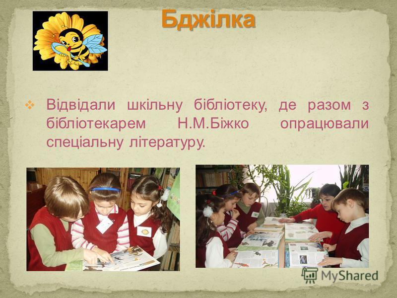 Відвідали шкільну бібліотеку, де разом з бібліотекарем Н.М.Біжко опрацювали спеціальну літературу.