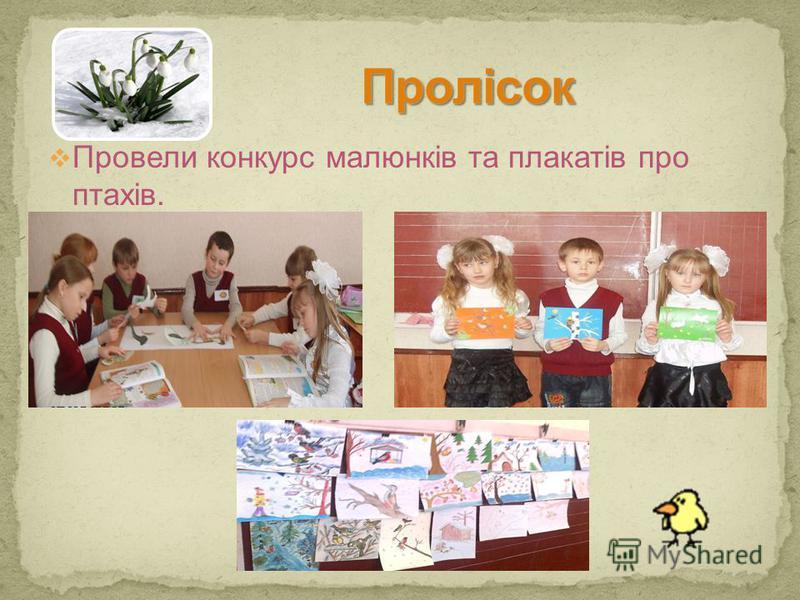 Провели конкурс малюнків та плакатів про птахів.