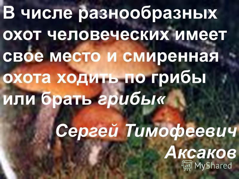 В числе разнообразных охот человеческих имеет свое место и смиренная охота ходить по грибы или брать грибы« Сергей Тимофеевич Аксаков