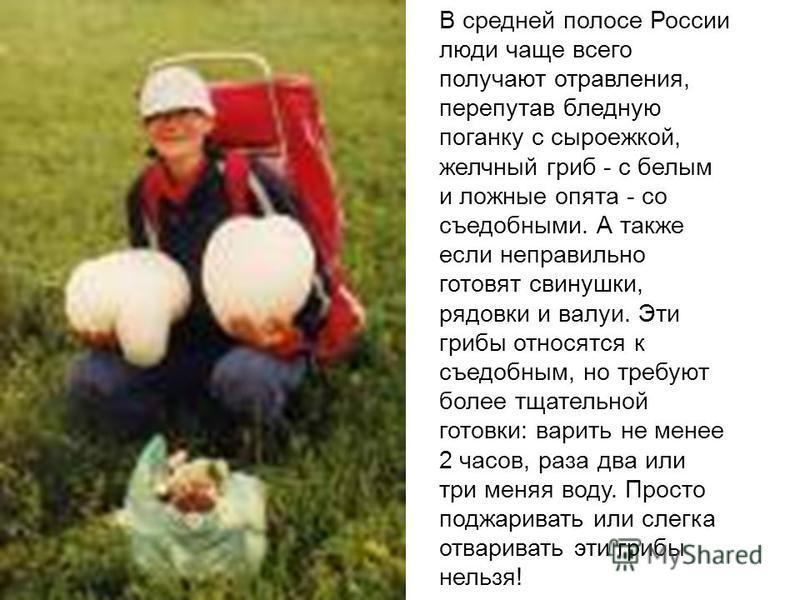 В средней полосе России люди чаще всего получают отравления, перепутав бледную поганку с сыроежкой, желчный гриб - с белым и ложные опята - со съедобными. А также если неправильно готовят свинушки, рядовки и валуи. Эти грибы относятся к съедобным, но