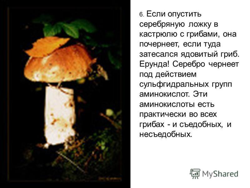 6. Если опустить серебряную ложку в кастрюлю с грибами, она почернеет, если туда затесался ядовитый гриб. Ерунда! Серебро чернеет под действием сульфгидрильных групп аминокислот. Эти аминокислоты есть практически во всех грибах - и съедобных, и несъе