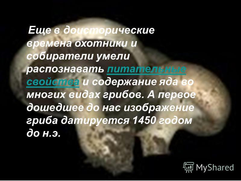 Еще в доисторические времена охотники и собиратели умели распознавать питательные свойства и содержание яда во многих видах грибов. А первое дошедшее до нас изображение гриба датируется 1450 годом до н.э.питательные свойства