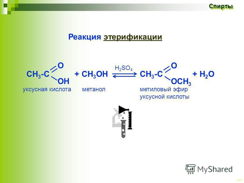 CEE Спирты Спирты СН 3 -С + СH 3 ОН CH 3 -С + Н 2 О Реакция этерификации метиловый эфир уксусной кислоты уксусная кислота метанол H 2 SO 4 О ОН О ОСН 3