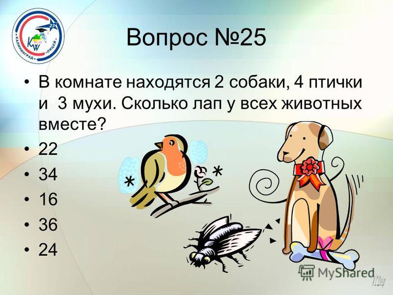 Вопрос 25 В комнате находятся 2 собаки, 4 птички и 3 мухи. Сколько лап у всех животных вместе? 22 34 16 36 24