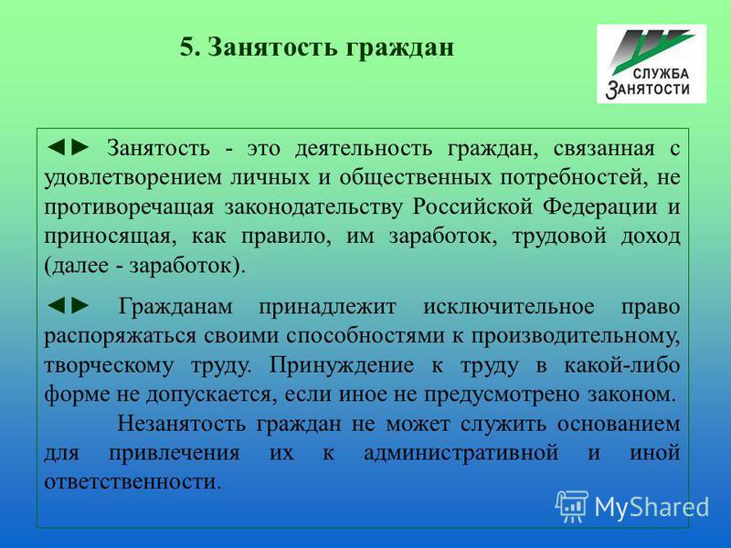 Занятость - это деятельность граждан, связанная с удовлетворением личных и общественных потребностей, не противоречащая законодательству Российской Федерации и приносящая, как правило, им заработок, трудовой доход (далее - заработок). Гражданам прина