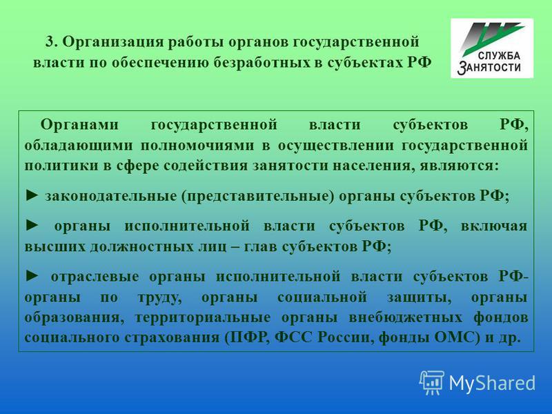 Органами государственной власти субъектов РФ, обладающими полномочиями в осуществлении государственной политики в сфере содействия занятости населения, являются: законодательные (представительные) органы субъектов РФ; органы исполнительной власти суб