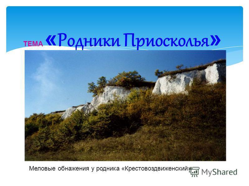 ТЕМА « Родники Приосколья » Меловые обнажения у родника «Крестовоздвиженский»