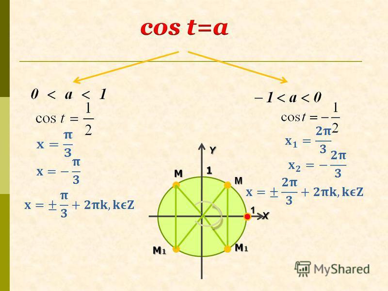 YX 1 1 M M1M1M1M1 M M1M1M1M1