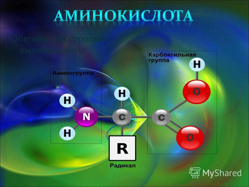 Общий план строения аминокислоты: