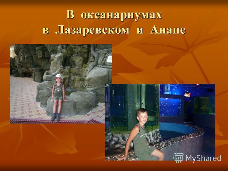 В океанариумах в Лазаревском и Анапе
