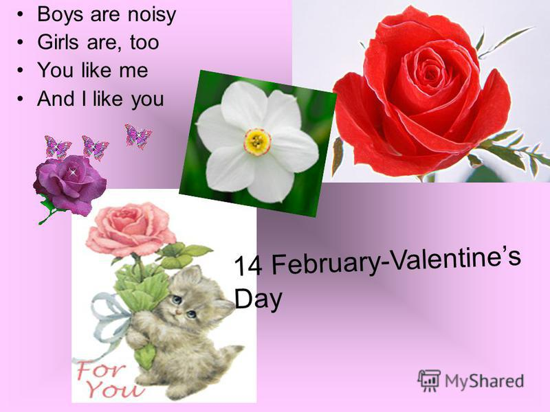 Boys are noisy Girls are, too You like me And I like you 14 February-Valentines Day