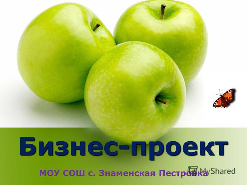 Бизнес-проект МОУ СОШ с. Знаменская Пестровка