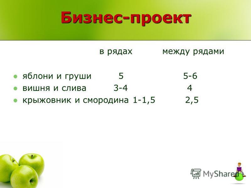 Бизнес-проект в рядах между рядами яблони и груши 5 5-6 вишня и слива 3-4 4 крыжовник и смородина 1-1,5 2,5
