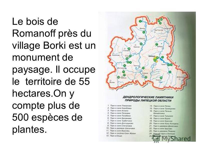 Le bois de Romanoff près du village Borki est un monument de paysage. Il occupe le territoire de 55 hectares.Оn y compte plus de 500 espèces de plantes.
