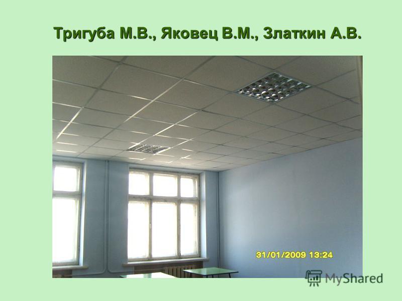 Тригуба М.В., Яковец В.М., Златкин А.В.