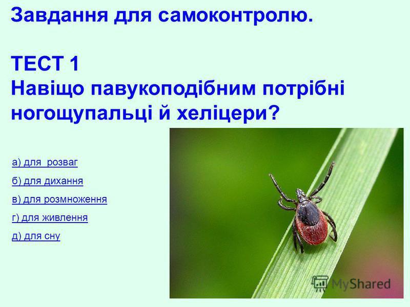Завдання для самоконтролю. ТЕСТ 1 Навіщо павукоподібним потрібні ногощупальці й хеліцери? а) для розваг б) для дихання в) для розмноження г) для живлення д) для сну