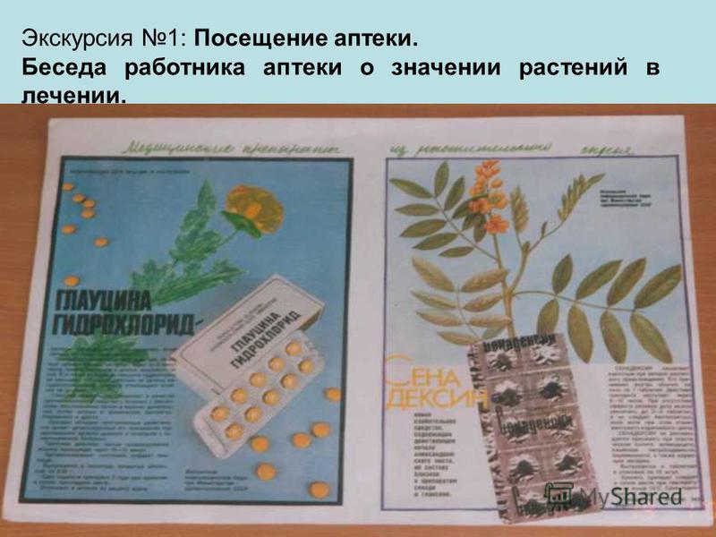 Экскурсия 1: Посещение аптеки. Беседа работника аптеки о значении растений в лечении.