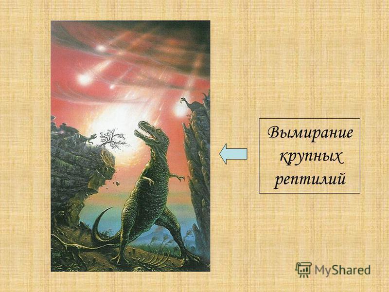 Вымирание крупных рептилий