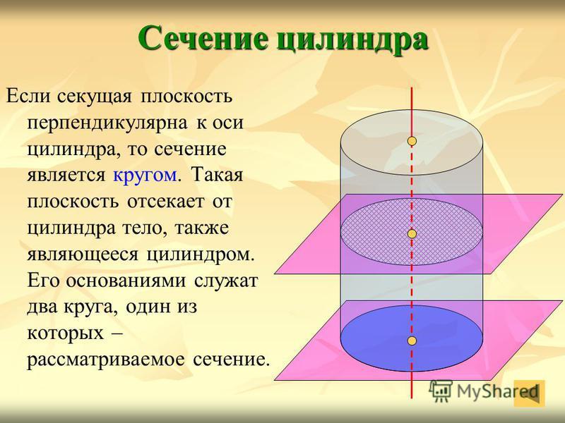 Если секущая плоскость перпендикулярна к оси цилиндра, то сечение является кругом. Такая плоскость отсекает от цилиндра тело, также являющееся цилиндром. Его основаниями служат два круга, один из которых – рассматриваемое сечение. Сечение цилиндра