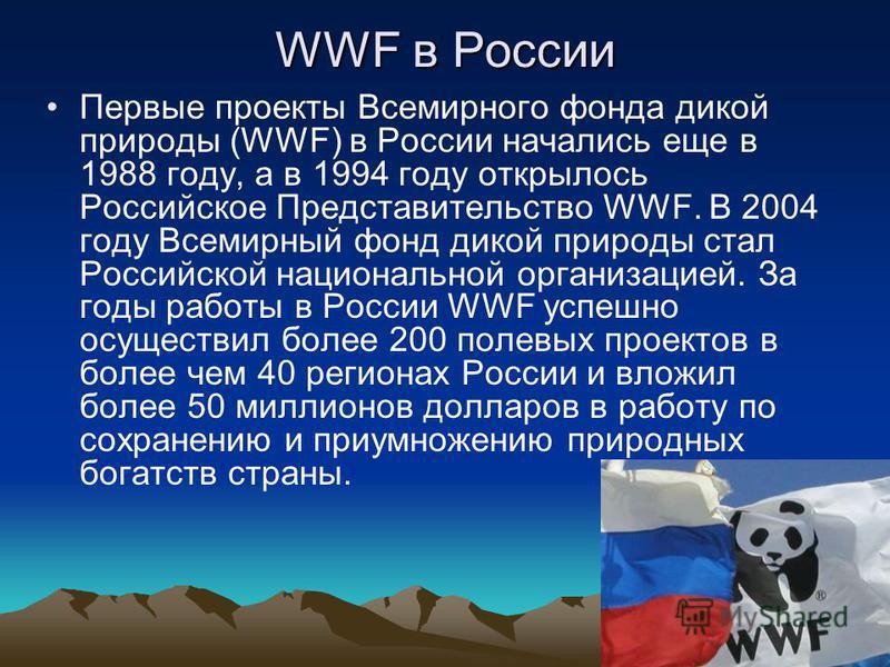 WWF в России Первые проекты Всемирного фонда дикой природы (WWF) в России начались еще в 1988 году, а в 1994 году открылось Российское Представительство WWF. В 2004 году Всемирный фонд дикой природы стал Российской национальной организацией. За годы