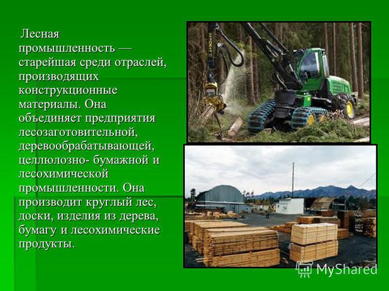 Доклад о лесной деревообрабатывающей промышленности 1332