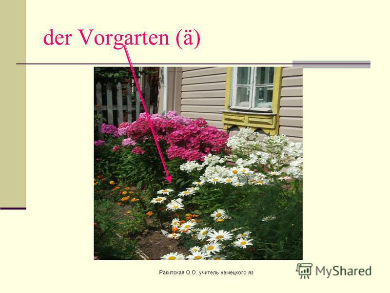 der Vorgarten (ä) Ракитская О.О. учитель немецкого яз