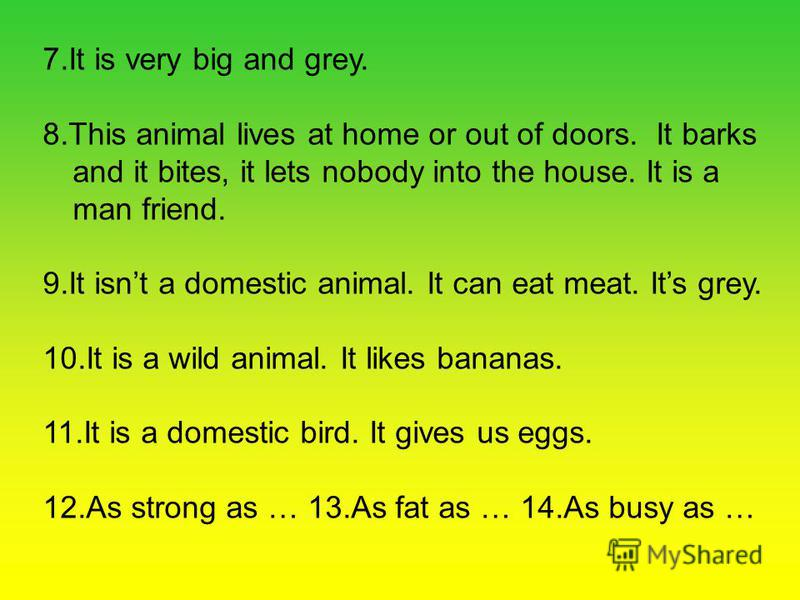 7. It is very big and grey. 8. This animal lives at home or out of doors. It barks and it bites, it lets nobody into the house. It is a man friend. 9. It isnt a domestic animal. It can eat meat. Its grey. 10. It is a wild animal. It likes bananas. 11