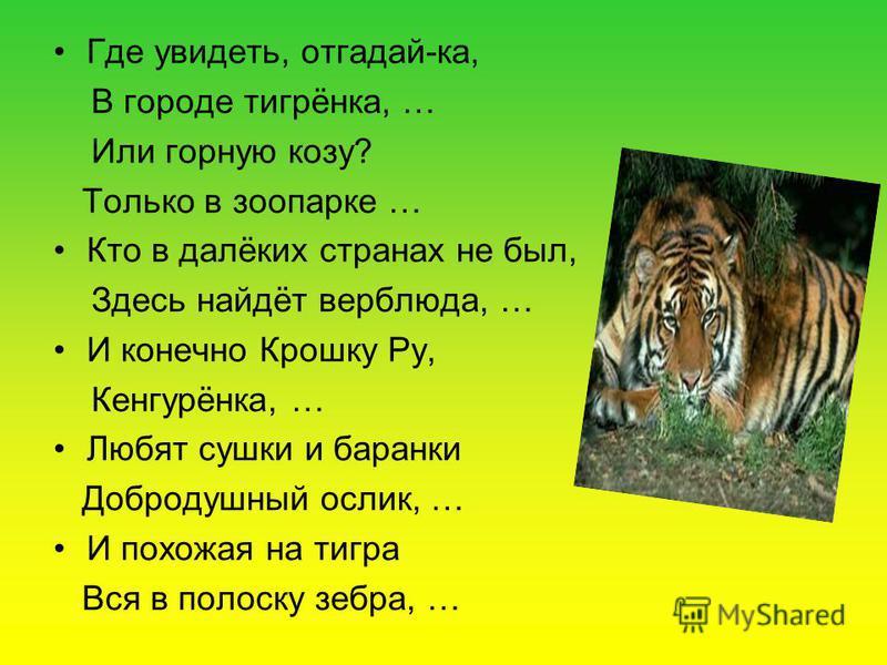 Где увидеть, отгадай-ка, В городе тигрёнка, … Или горную козу? Только в зоопарке … Кто в далёких странах не был, Здесь найдёт верблюда, … И конечно Крошку Ру, Кенгурёнка, … Любят сушки и баранки Добродушный ослик, … И похожая на тигра Вся в полоску з