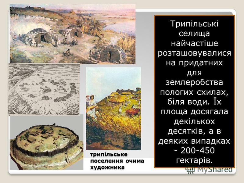 трипільське поселення очима художника Трипільські селища найчастіше розташовувалися на придатних для землеробства пологих схилах, біля води. Їх площа досягала декількох десятків, а в деяких випадках - 200-450 гектарів.