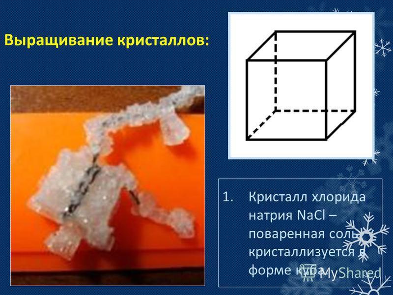 Выращивание кристаллов: 1. Кристалл хлорида натрия NaCl – поваренная соль кристаллизуется в форме куба.