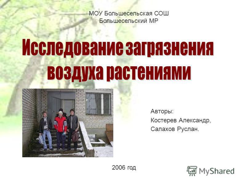 2006 год Авторы: Костерев Александр, Салахов Руслан. МОУ Большесельская СОШ Большесельский МР