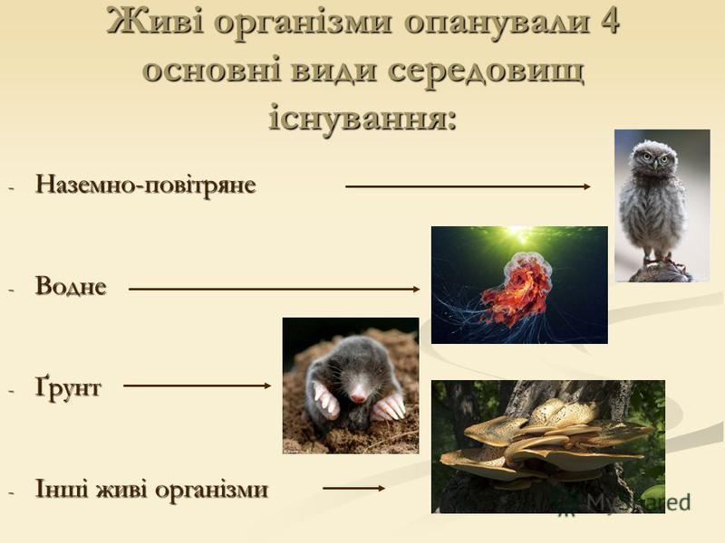 Живі організми опанували 4 основні види середовищ існування: - Наземно-повітряне - Водне - Ґрунт - Інші живі організми