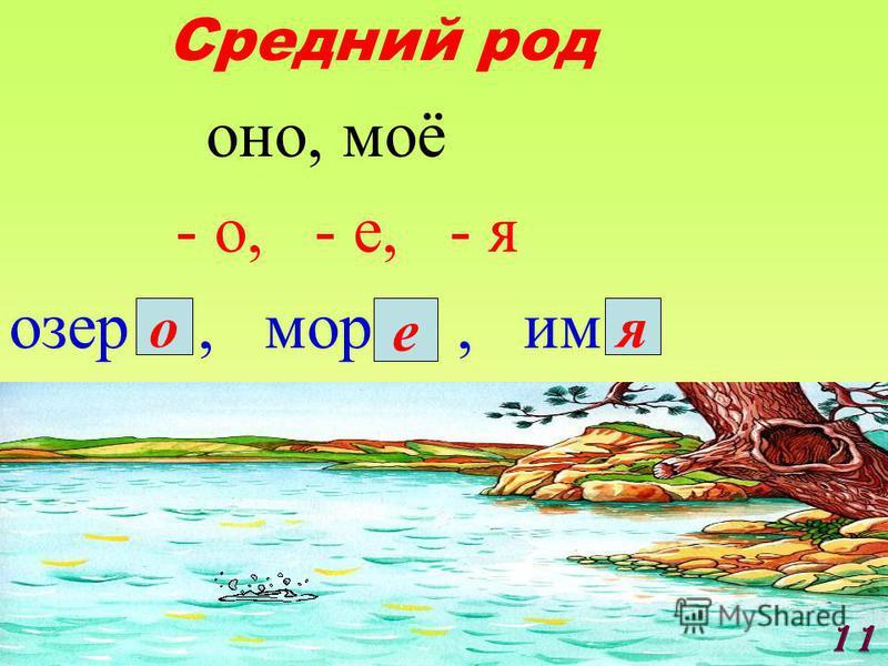 Средний род о но, моё - о, - е, - я озер, мор, им о е я 11