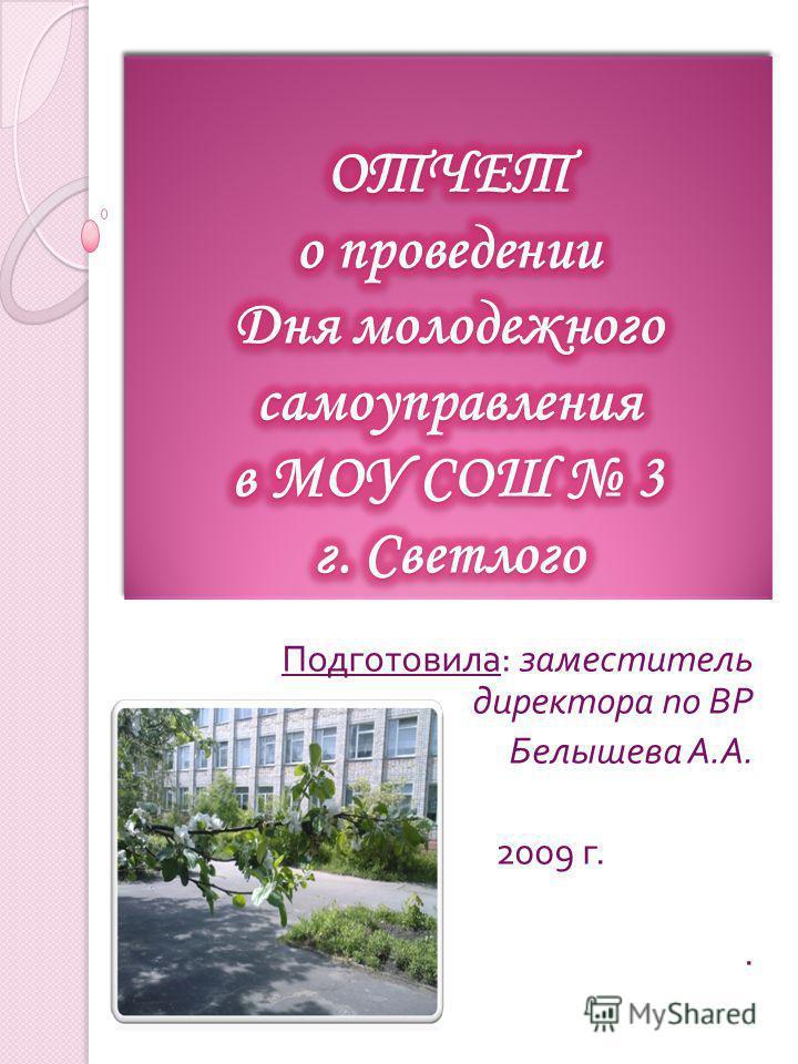 Подготовила : заместитель директора по ВР Белышева А. А. 2009 г..