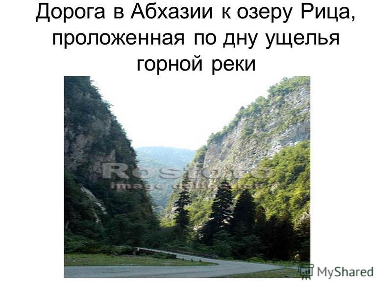 Дорога в Абхазии к озеру Рица, проложенная по дну ущелья горной реки