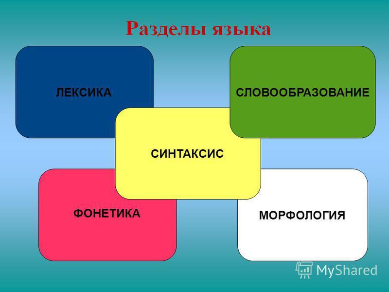 ЛЕКСИКА ФОНЕТИКА МОРФОЛОГИЯ СИНТАКСИС СЛОВООБРАЗОВАНИЕ