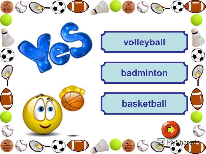 volleyball badminton basketball