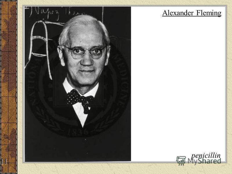 Alexander Fleming penicillin 11